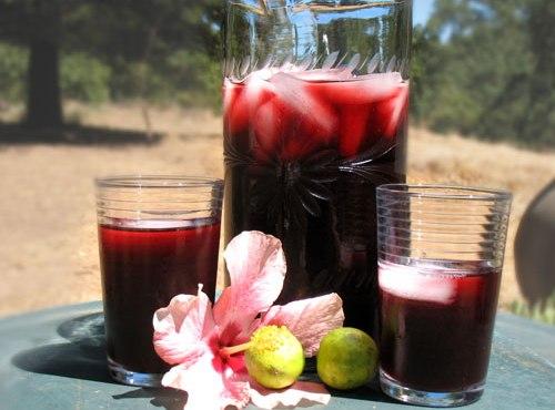 Bebidas egipcias, Karkadé, gastronom�a.