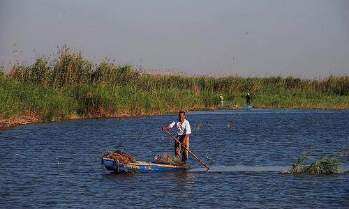 Lago Mariut