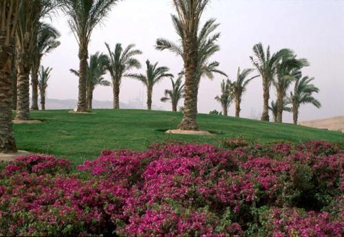 Parque Al-Azhar