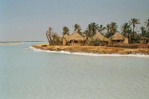 Oasis de Siwa