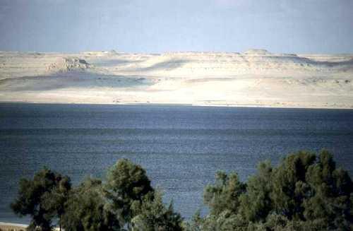 Parque Nacional Lago Qarun, naturaleza en Egipto