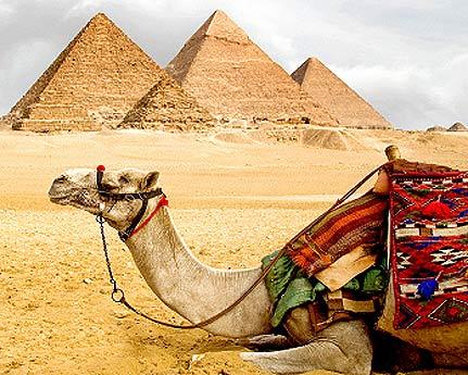 Guía para el turista en Egipto
