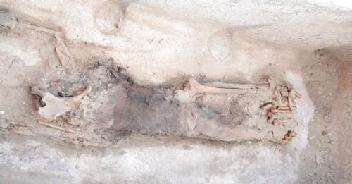 Momia de la Reina Sesheshet