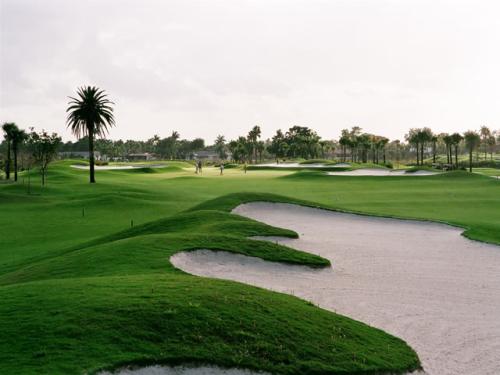 Practicando Golf en Alejandria