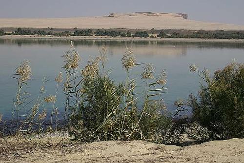 Wadi el Rayan, en el Fayum